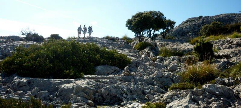 Majorca GR221 Dry Stone Way trek