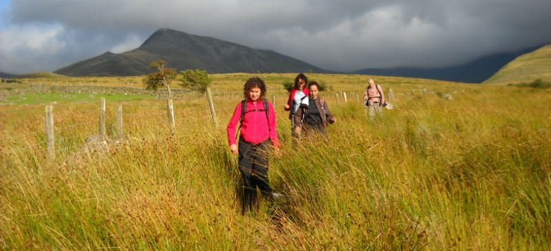 Snowdonia guided walking