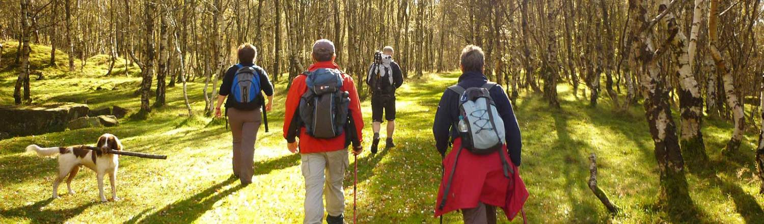image showing walkers on a guided walk in the Peak District National Park
