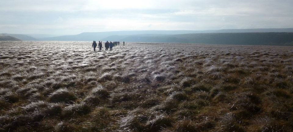 Image showing people on a guided walk in the Peak District