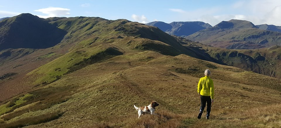image showing guided walking in the Lake District